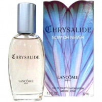 Chrysalide Now or Never